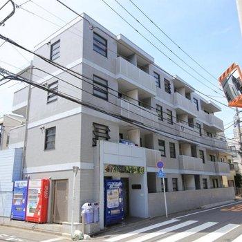 スカイコート新宿第5