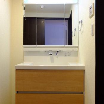 水の出方がホテルみたいな洗面台※写真は越部屋です