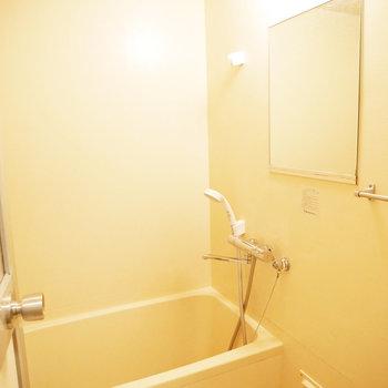 浴室。鏡が小さめ