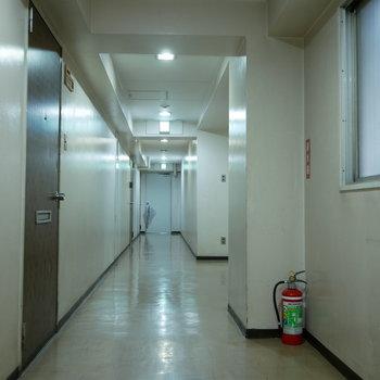 廊下はちょっぴり寂しい感じ。