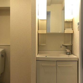 独立洗面台の下には洗剤などをしまって。
