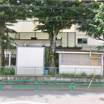 道路を挟んで、向こう側は小学校。