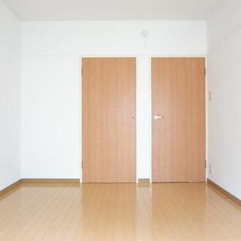 こちらは奥の洋室。収納スペースがありますね。※写真は別室反転です。