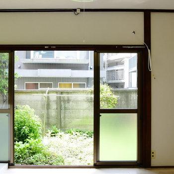 窓は南向き。