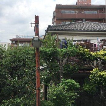 眺望がこちら。目の前に家屋があり、そこの緑が生い茂って見えます。