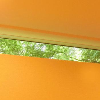洋室、上部の窓から見えた緑