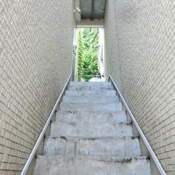 階段の先には緑