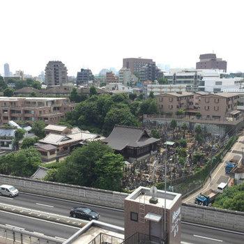 お墓が遠くに見えます・・・!※写真は11階からの眺望です。