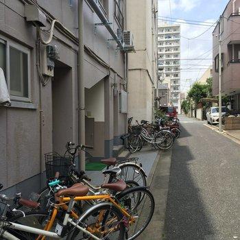 自転車がおびただしい数並んでます。多い。