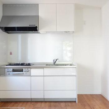 キッチンです。冷蔵庫も置けますね。