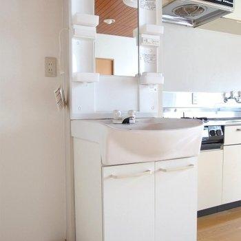 洗面台、洗濯機置き場の位置は若干無理やり※写真は類似間取り別部屋のものです。