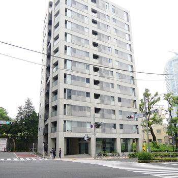 桜田通り沿いに佇むマンションです。