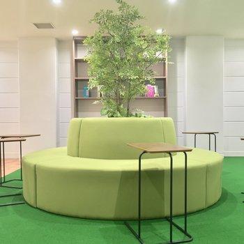 このソファ、シンボルツリー的な感じが面白い