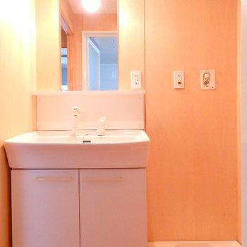 独立洗面台。壁はウッディな質感で統一※写真は6階の別部屋です