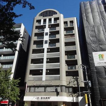 高宮通り沿いに建つシュッとしたマンション。1階には動物病院が入っています。