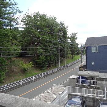 お隣は森!清々しい空気を感じます。※写真は別室からの眺望です