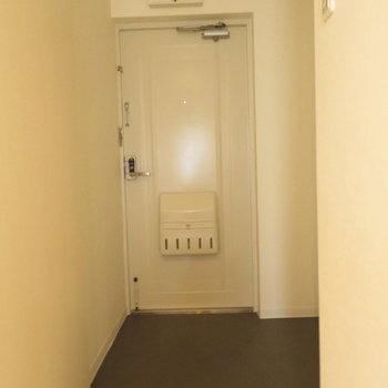 玄関広いですがシューズボックスはないです