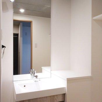 サニタリールームは開けると独立洗面台がお出迎え!