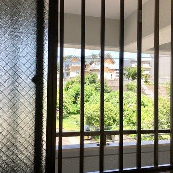 キッチンの窓からも素敵な緑。共用部に面してはいますが角部屋なので開けっ放しでも人目気にならなです。