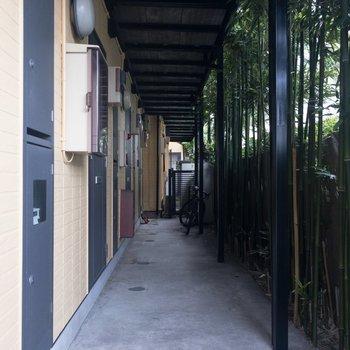 竹が風情を醸し出しています