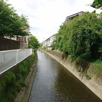 周辺】すぐ近くに流れる小川は涼を感じられそう