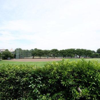 【洋室1】眺望は野球場が!
