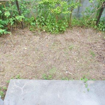 ちょっとした庭が付いてます。※写真は102号室のもの