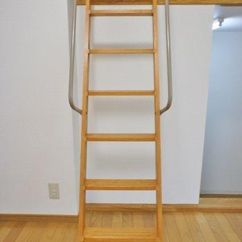 このはしごでロフトへ。※写真は102号室のもの