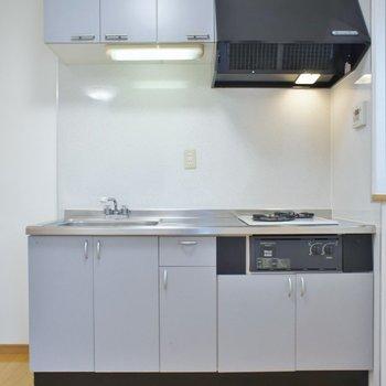 一人には贅沢な大き目キッチン!