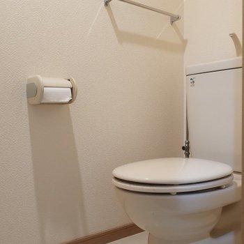 トイレにはかわいいアートとか飾りたい♪(※写真はクリーニング前のものです)