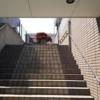 この立派な階段が毎日迎えてくれます