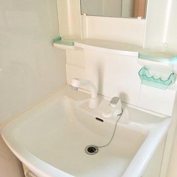 使い勝手が良さそうなシャワーヘッドの独立洗面台。