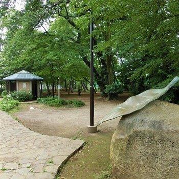 宮前公園がお部屋のすぐ目の前に。