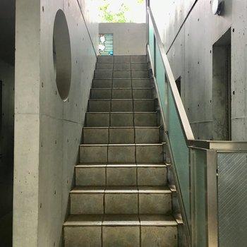 きれいな階段を2階まで。