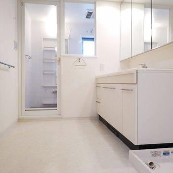 後ろはサニタリールームとなっております。左は洗濯パンがお出迎え。