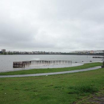 ここが大相模調節池。遠くに見えるは、イオンレイクタウンです。