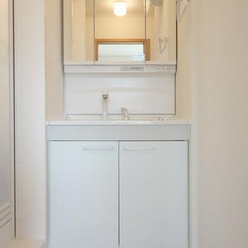 洗面台は独立タイプがしっかりあります!
