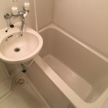 お風呂とセットの2点タイプ。