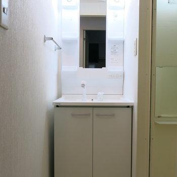 洗面台も完備してます。写真は反転取り別部屋のものです。