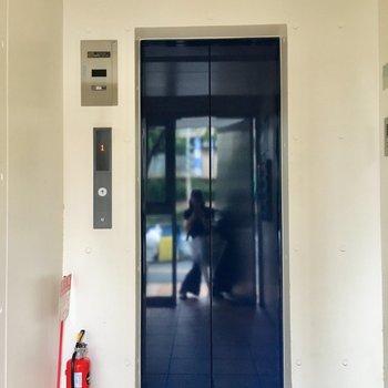 青いエレベーターを5階まで。