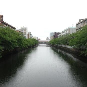 近くには川も流れています。