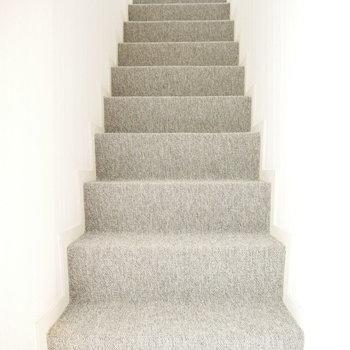 カーペットの階段。ふかふかで気持ちいい