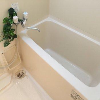 お風呂はちょうどいいサイズ感◎