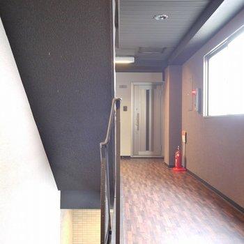 廊下はちょこっと豪華に。