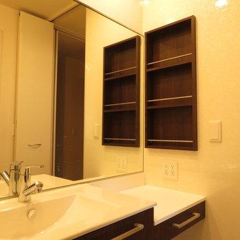 鏡は大きく!引き出しも棚もあります