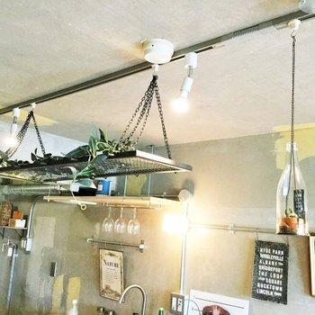 ライティングレールにはこのようにエアープランツを吊って。