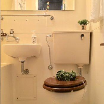 バスルームは3点ユニットですが、キレイですよ