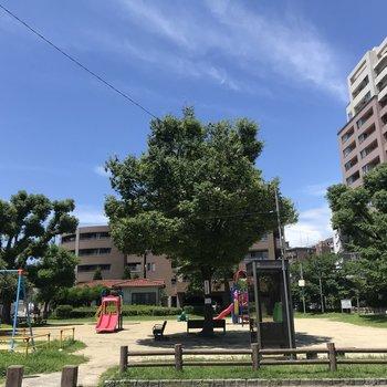 帰宅途中の公園です♬