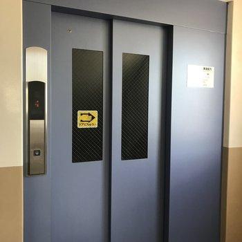 エレベーターがかわいい色でした!
