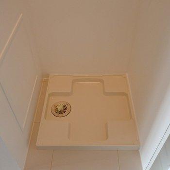 洗濯パンは洗面のおとなりに。※写真は別室です
